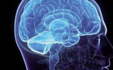 脑部肿瘤的预防方法有啥
