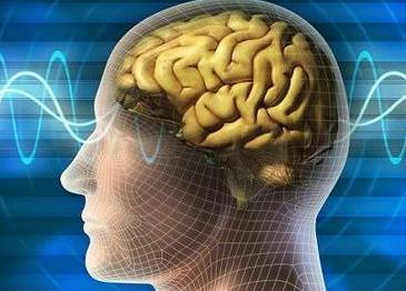 为什么多数脑外伤病人会肌张力增高